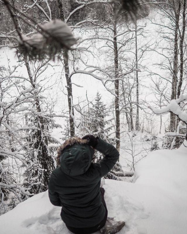 Halusin tulla toivottamaan kivaa alkanutta viikkoa tämän talvisen kuvan myötä!❄️ . . .  #newweek #halimasjärvenluonnonsuojelualue #halimasjärvi #retkellä #outdoorbloggers #instablogitfinland #vaikuttajatfinland #vaikuttajamedia #somevaikuttajatfinland #ulkonaperillä #luontoonfi #tampere #talviretkeily