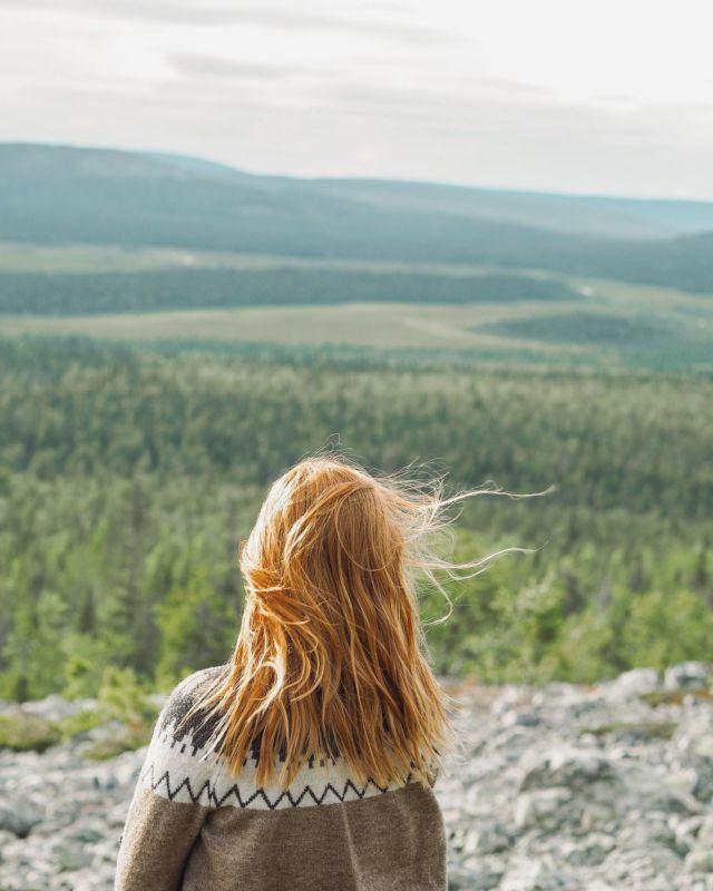 Vielä pientä kuvapäiväkirjaa Ylläksen suunnilta🌿  #visitylläs #finnishlapland